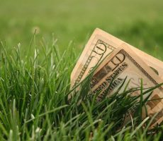 How Much Does Lawn Care Cost?